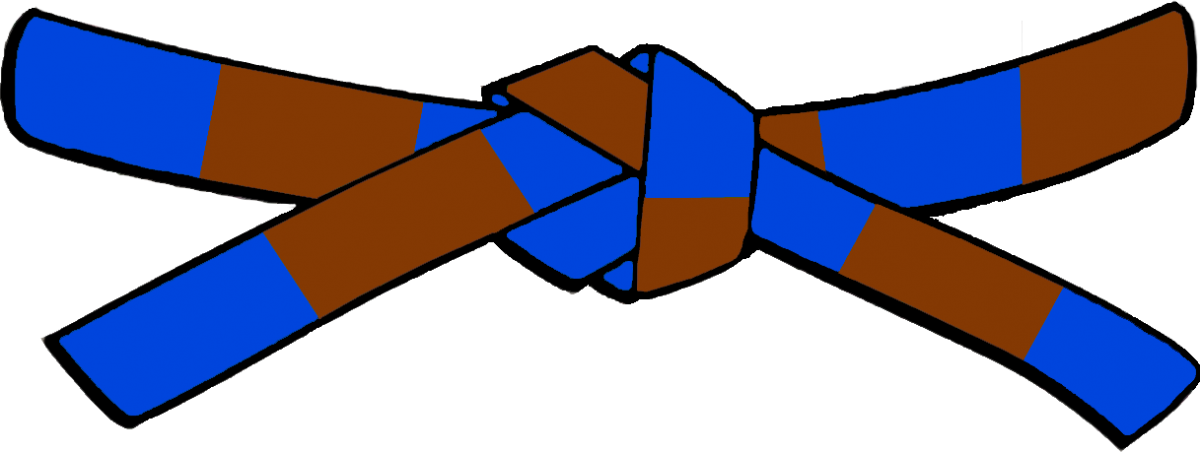 Ceinture bleue marron