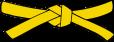 Ceinture jaune 1