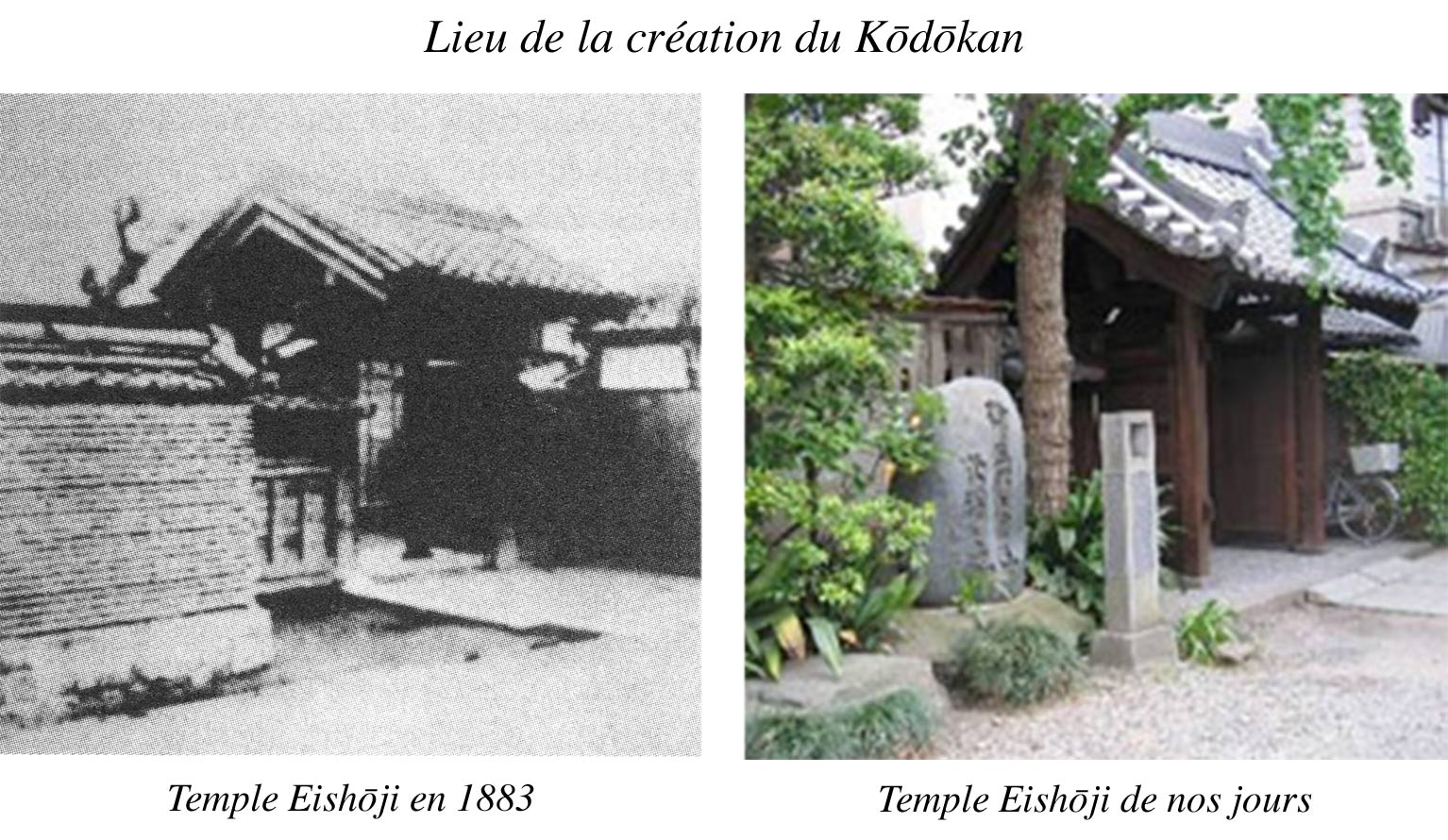 Lieu creation kodokan web