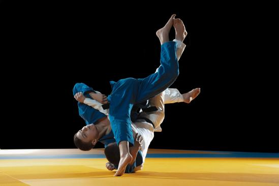 Image judo site 1